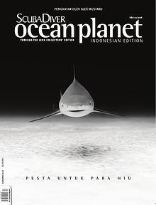 SDAA - Indonesia Edition