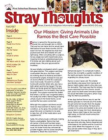 Stray Thoughts 2017 Volume 4