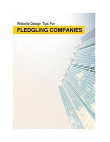 Website Design Tips For Fledgling Companies