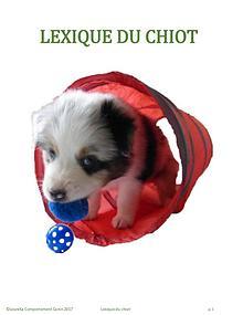 LEXIQUE DU CHIOT