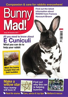 Bunny Mad! Issue 29