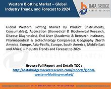 Global Western Blotting Market