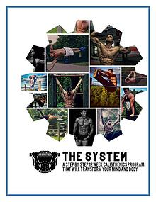 Bar Brothers The System PDF  Free Download