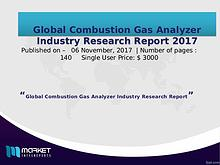 Combustion Gas Analyzer Industry Research Report