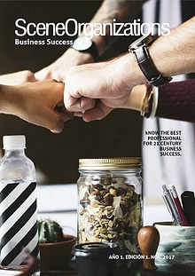 SceneOrganizations - Business success