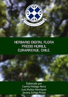 Herbario digital Predio Huirilil