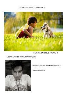 Animal and human language