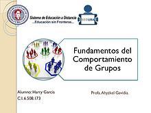 Fundamentos del Comportamiento de Grupos