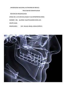 revista radiologica
